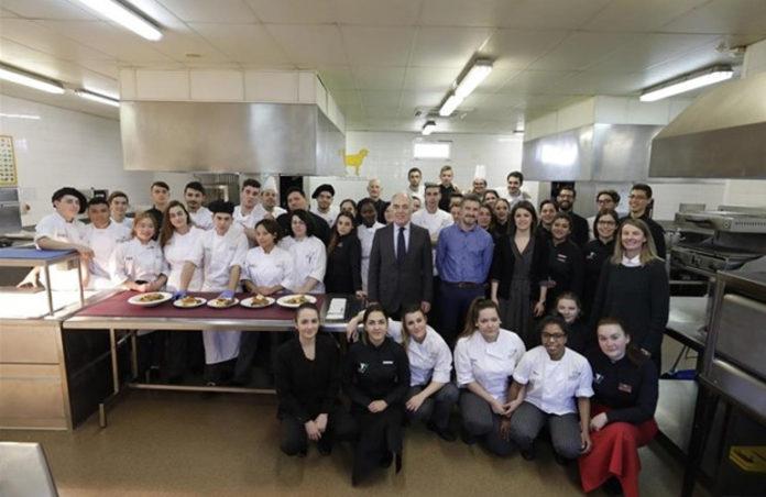 Escuela TOPI. Zaragoza online