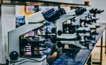 Investigadoras de Aragón impulsan actividades de divulgación científica