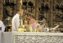 catedral la SEO