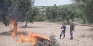 quema-en-aragon