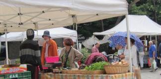 X Aniversario de La Muestra Local Agroecologica