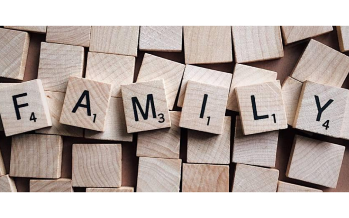 familia numerosa aragon