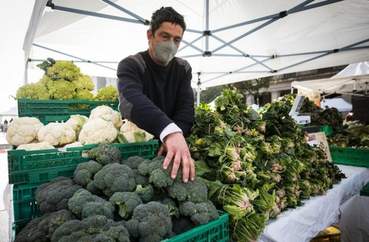 Zaragoza Estrategia de Alimentación