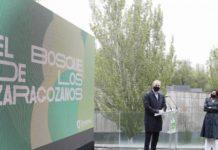 El Bosque de los Zaragozanos