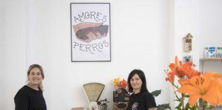 Zaragoza Amores Perros